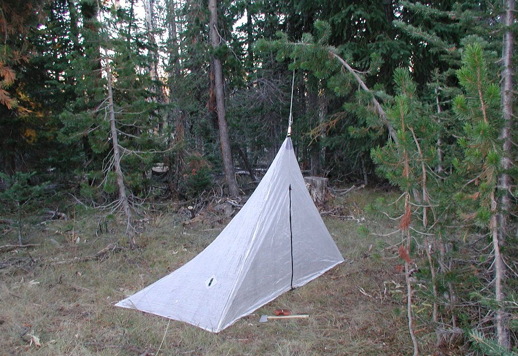 A green branch can be used instead of a tent pole sometimes.